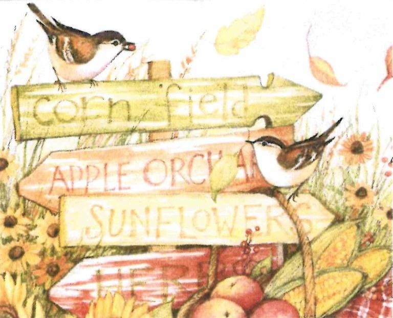 Fall Watercolor class harvest.jpg